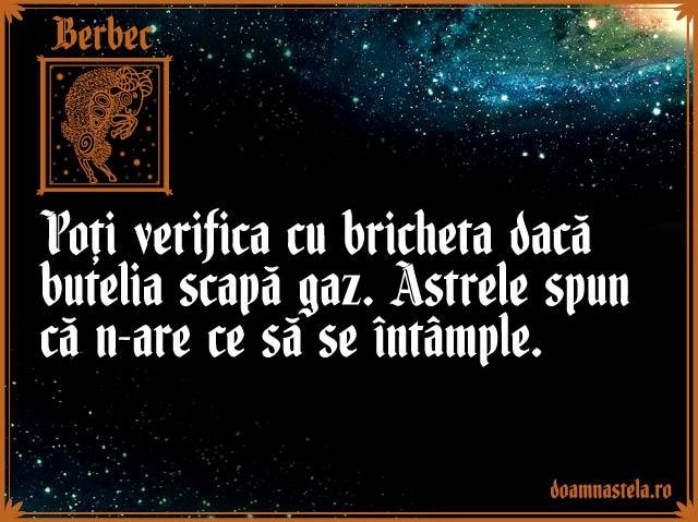 Berbec1