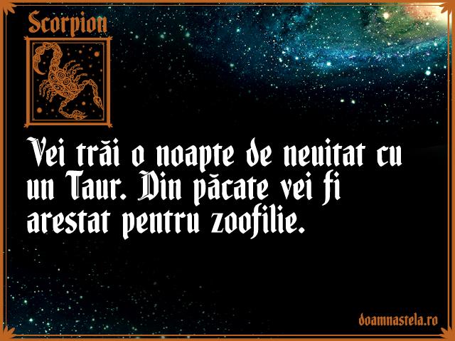 Scorpion35