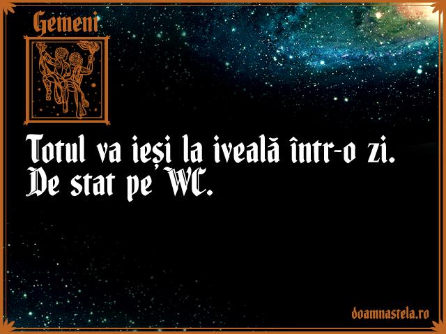 Gemeni1