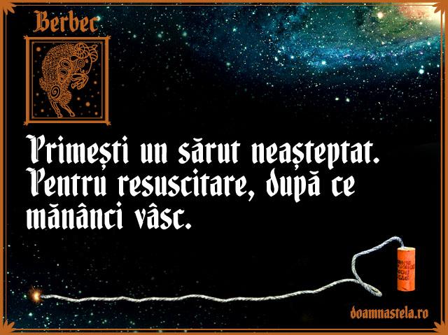 Berbecrev
