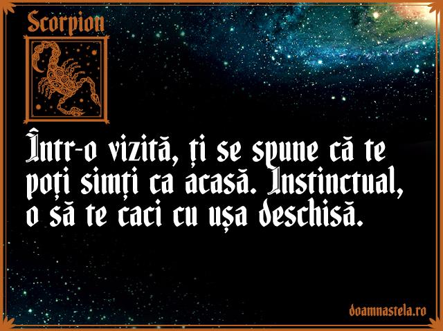 Scorpion1